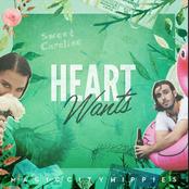 Magic City Hippies: Heart Wants