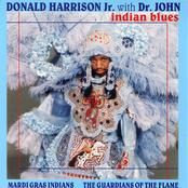 Donald Harrison: Indian Blues
