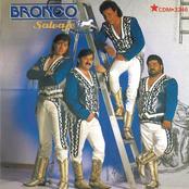 Bronco: Salvaje Y Tierno