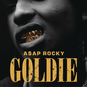 Goldie - Single