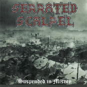 Serrated Scalpel: Suspended In Misery
