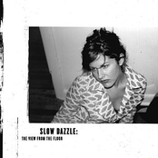 A Welfare State by Slow Dazzle