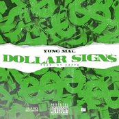 Dollar Signs - Single