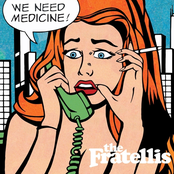 The Fratellis: We Need Medicine