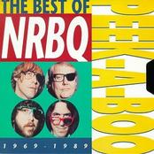 Peek-A-Boo The Best of NRBQ 1969-1989