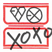 The 1st Album 'XOXO'