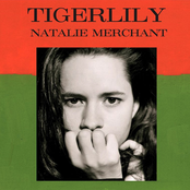 Tigerlily cover art