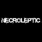 necroleptic