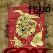 Fistula: Goat