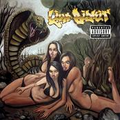 Gold Cobra (Deluxe Explicit)