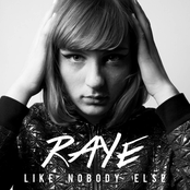 Like Nobody Else - Single