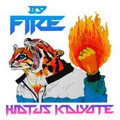Hiatus Kaiyote: By Fire
