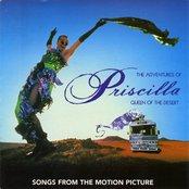 I Love The Nightlife (Disco 'Round) by Alicia Bridges