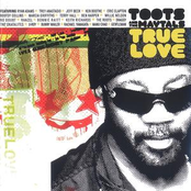Toots and the Maytals: True Love