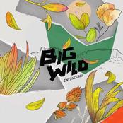 Big Wild: Invincible