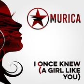 I Once Knew (A Girl Like You) - Single