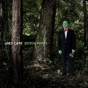 Joey Cape: Stitch Puppy