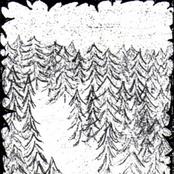 Forgotten Woods (Demo)