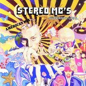 Elevate My Mind by Stereo MC's