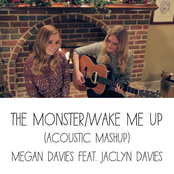 The Monster, Wake Me Up (Acoustic Mashup)
