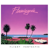 Flight Fantastic