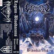 Bloodaeons