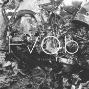 HVOB: Trialog