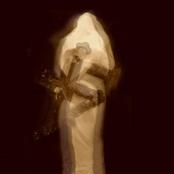 De Contemplanda Morte: De Reverencie Laboribus ac Adorationis