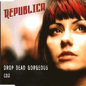 Drop Dead Gorgeous (disc 2)
