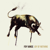 Foy Vance: Joy Of Nothing