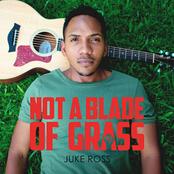 Juke Ross: Not a Blade of Grass