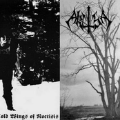 Cold Wings of Noctisis / Akitsa