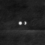 Venomous Moon
