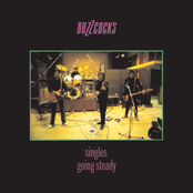 Buzzcocks - Singles Going Steady Artwork