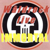 Live At Waldrock