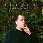 Brad Stank: Pond Weed