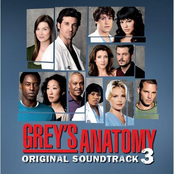Grey's Anatomy Volume 3