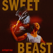 Illiterate Light: Sweet Beast