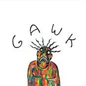 Album cover of Gawk, by Vundabar