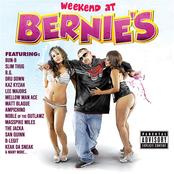 Berner: Weekend At Bernie's