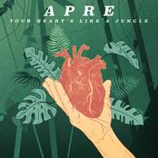 Your Heart's Like A Jungle - Single