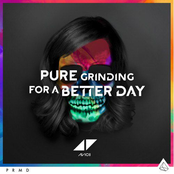 Avicii - Pure Grinding For A Better Day