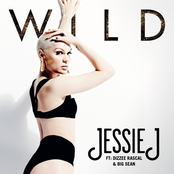 Wild (feat. Big Sean & Dizzee Rascal) - Single