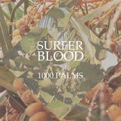 Surfer Blood: 1000 Palms