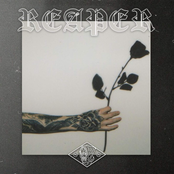 nothing,nowhere.: Reaper
