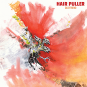 Hair Puller: Old Friend