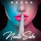 Nadie Sabe - Single