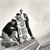 Beastie Boys 5a3d889835a845e6952cb9998a293fe0