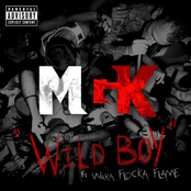 Wild Boy (feat. Waka Flocka Flame) - Single