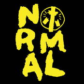 The Homeless Gospel Choir: Normal
